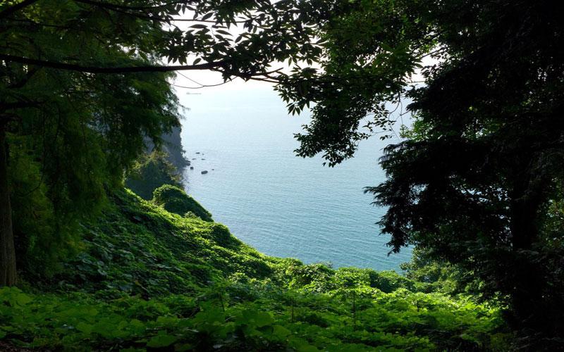 ساحل Mtsvane Kontskhi بهشت سبز گرجستان