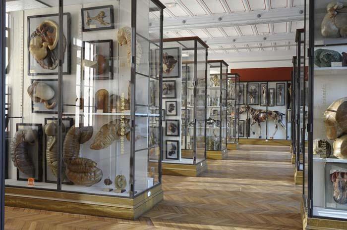 وحشتناکترین موزههایی که تضمین کردهاند شما را به وحشت بیندازند