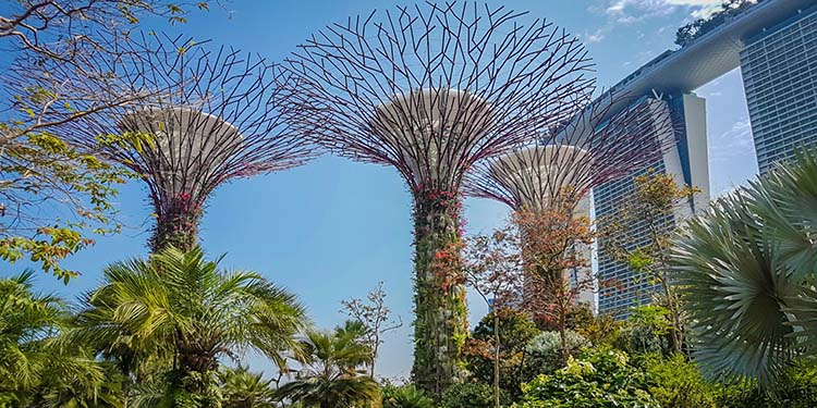 راهنمای جامع سفر به سنگاپور